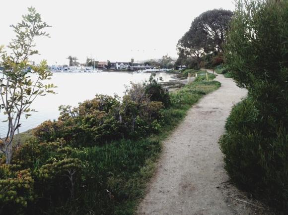 walking-path