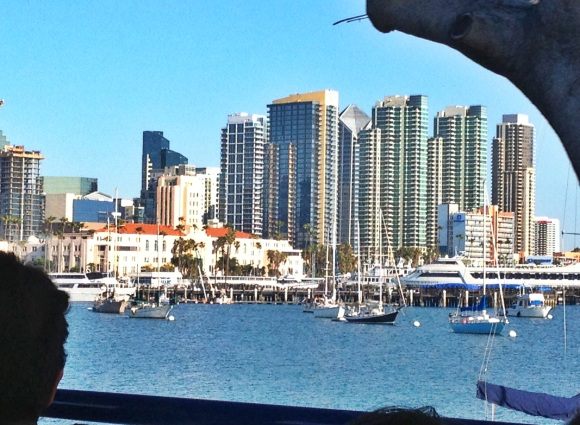 San-Diego-skyline-tour