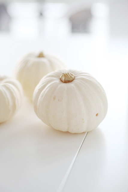 white-pumpkin
